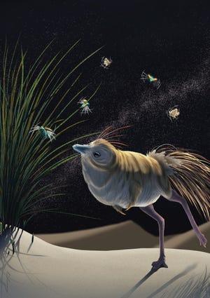 An artist's conception of the little bird-like dinosaur Shuvuuia deserti.
