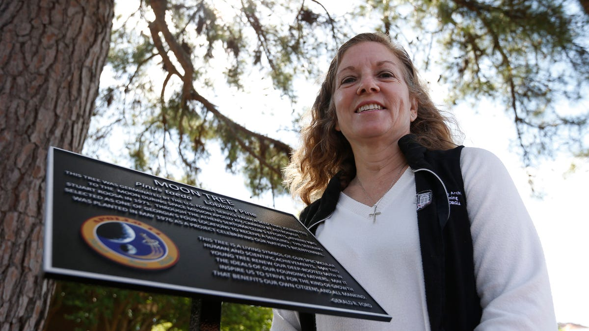 'A cultural resource': Athens Moon Tree rededicated with new marker