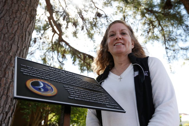 Melanie Ford, a University of Georgia employeewho spearheaded the effort to place a new marker for the Moon Tree, poses for a photo by the loblolly pine in downtown Athens.