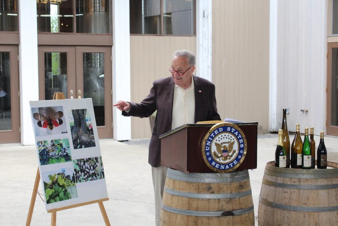 U.S. Senate Majority Leader Charles E. Schumer revealed during a visit to Hermann J. Wiemer Vineyard near Himrod that decisions by the U.S. Department of Agriculture (USDA) to stop collecting data on grape production vineyards in New York put the Finger Lakes region, the state's grape and wine industries, and the local economy at risk.