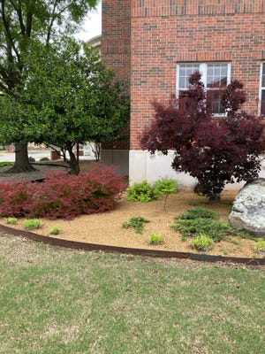 There are plenty of ways to use foliage plants to landscape their home, with numerous trees and shrubs to choose from.