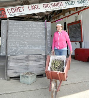 """Beth Hubbard, owner of Corey Lake Orchards in Three Rivers, predicts this year's asparagus is going """"Ah"""" mazing, tender and delicious, but brief."""