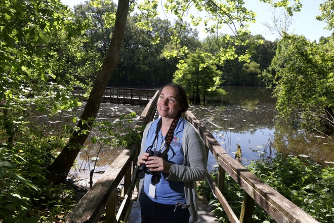 Ornithologist Mary Schmidt leads tours for the birding enthusiasts to see the Purple Martin, among other species, during nature walks at the Lichterman Nature Center.