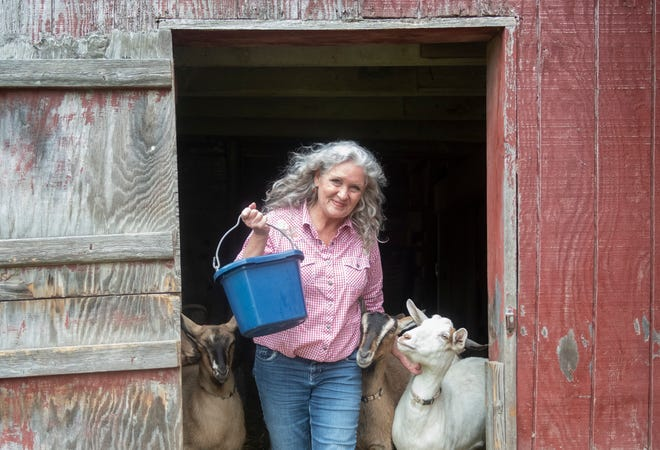 Abbe Turner with her alpine goats and donkey at Beaver Hollow Farms in Mantua.