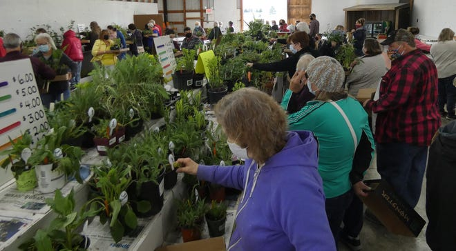 Shoppers crowd the aisles at the Earth, Wind and Flowers Garden Club's annual plant sale on Saturday morning at the Crawford County Fairgrounds. The club is celebrating its 35th year.