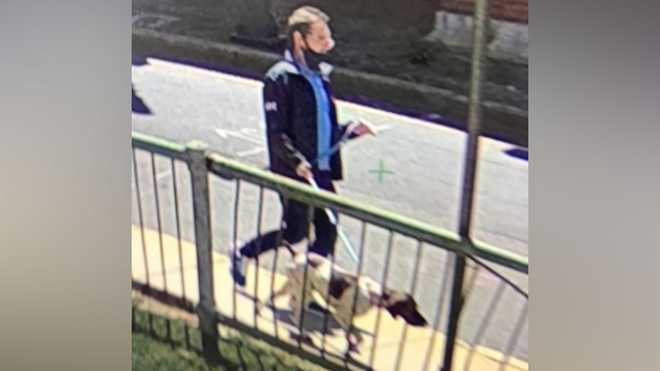 Cambridge police released a photo of this person, who was arrested and charged with stealing the dog in this picture from a vehicle that was parked on Memorial Drive in Cambridge, on May 7.