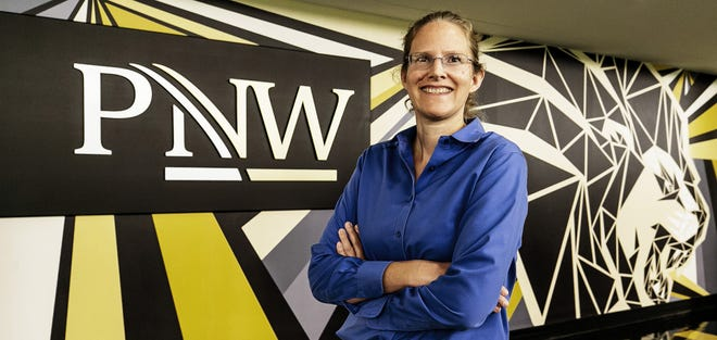 Grethe Hystad, assistant professor of Statistics at Purdue Northwest, has been selected as the recipient of the 2021 Felix Chayes Prize for Excellence in Research in Mathematical Petrology.