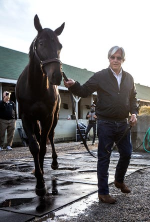 Coach Bob Baffert drives Medina Spirit to his stall in the morning after his seventh Kentucky Derby win with the horse.  One week later, Medina Spirit was announced to test positive for an abundance of post-race anti-inflammatory drugs.