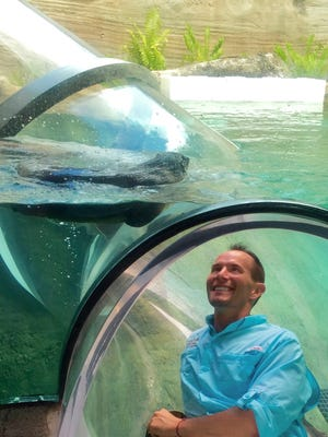 David Rahahę:tih Webb, executive director of the Everglades Wonder Gardens examines the otter habitat at the Miami Zoo. He says he wants to bring this same experience to the attraction in Bonita Springs