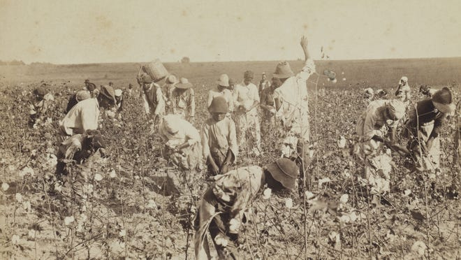 Archival image of a group of unidentified workers picking cotton in Thomasville, Georgia.