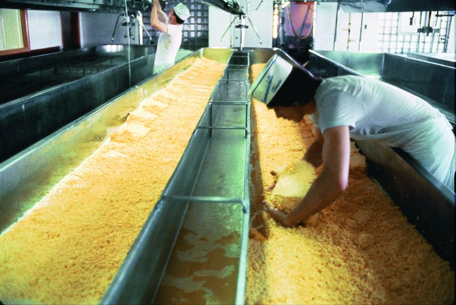 Cheese plant employees separate curds from whey in this file photo.