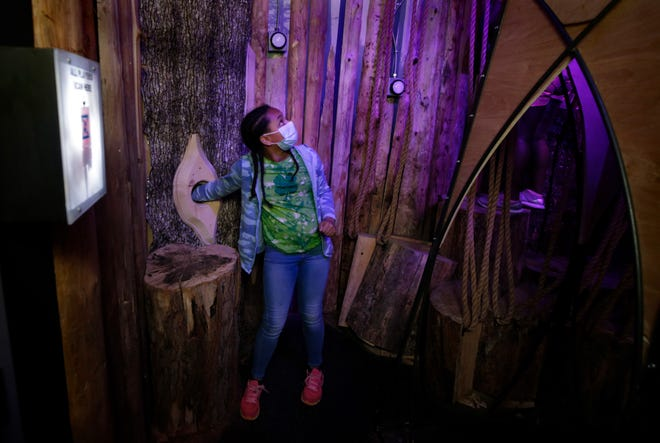 Zoe Rogue looks for a reaction to her action in the Dystopian Forest portal.
