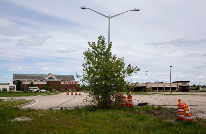 Vegetation grows up around a street lamp at one of the dead end sections of road within the Legacy Pointe development in Springfield Tuesday. The Springfield City Council's Committee of the Whole Tuesday voted to place an ordinance funding half the project before the council.
