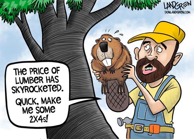 Landgren cartoon: Lumber prices. Don Landgren cartoon on skyrocketing lumber prices.
