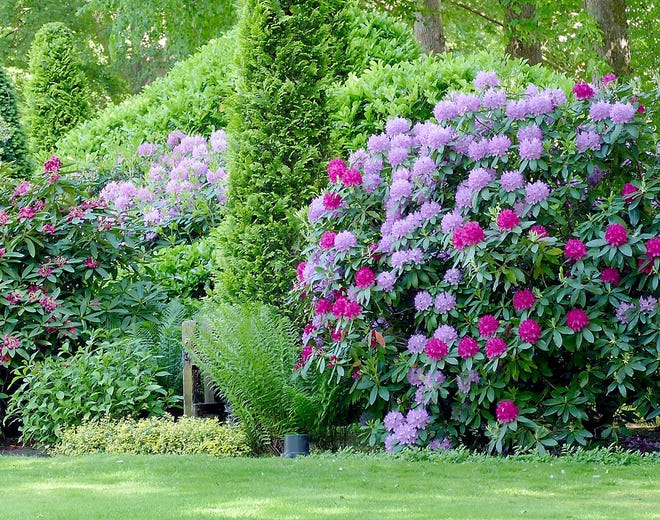 Vegetation thrives if grown according to its desired or tolerable pH level, the measurement of acidity or alkalinity in soil.