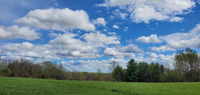 Wendie Sammarco of Littleton shared a photo she took recently at Littleton's Long Lake Park.