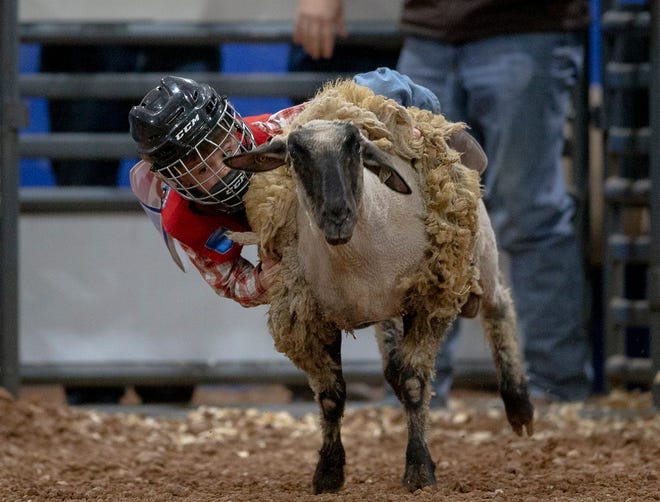 Easton Graham tries to hang on to his sheep during Rodeo Austin's Mutton Bustin' Mania event on Saturday, March 16, 2019, in Austin, Texas.