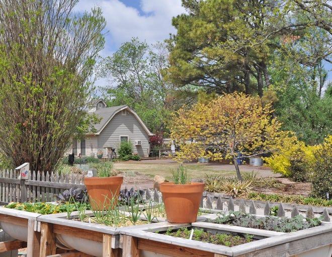 New spring garden