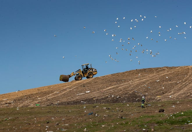 A front end loader carries rolls of sod to cover the sides of the landfill at the North Central Polk County Landfill in Lakeland on Friday, May 7, 2021.