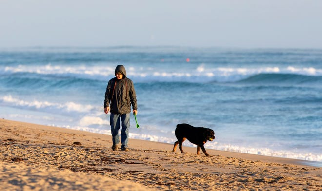 Unleashed dogs could soon be allowed on the beaches between Wells Road and Sunset Avenue. Town council voted on first reading Tuesday in favor of a new ordinance that would permit owners to walk their unleashed dogs on those beaches between dawn and 9 a.m.