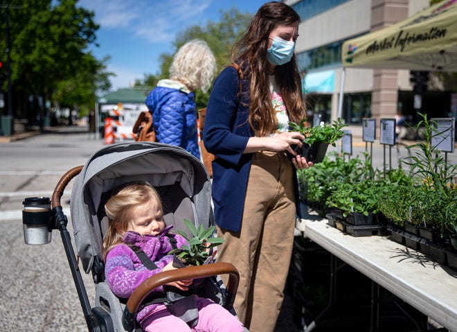 Sabrina Serafin, 2, checks out a sage plant as her mother, Emily Serafin, shops the selection at the Gregory Orchard and Garden stand during the first Old Capitol Farmers Market of the summer season along East Adams Street in Springfield on Wednesday.