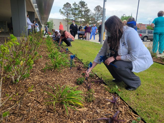 Hospital employees place pinwheels in the flowerbeds Wednesday. Each pinwheel represents a local patient who recovered from COVID-19.