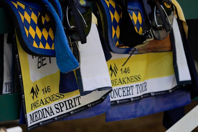 Saddles for Kentucky Derby winner and Preakness entrant Medina Spirit, left, and Concert Tour are seen on  a railing in the stables ahead of the Preakness Stakes horse race at Pimlico Race Course, Wednesday, May 12, 2021, in Baltimore. (AP Photo/Julio Cortez)