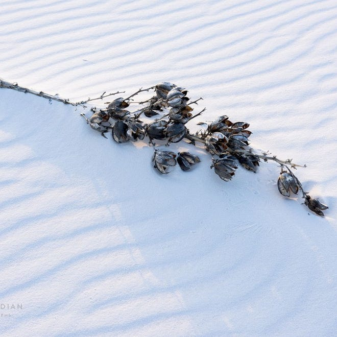 Santa Fe photographer CraigVarjabedian has captured images of White Sands National Park that are featured in a new exhibit at the Centennial Museum at the University of Texas at El Paso.