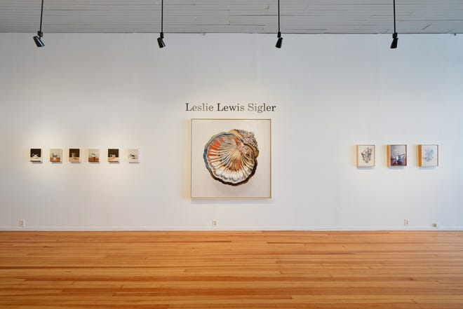 Leslie Lewis Sigler's oil paintings of silver family heirlooms are extraordinarily rich in shapes, colors and details. Stare for a while and a scalloped serving dish turns into cool liquid, ornate bird feathers or rippling abstractions.