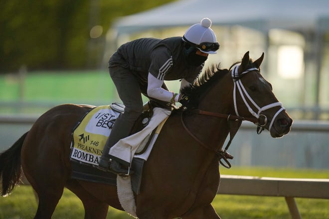 Rombauer works out at Pimlico Race Course on Wednesday.