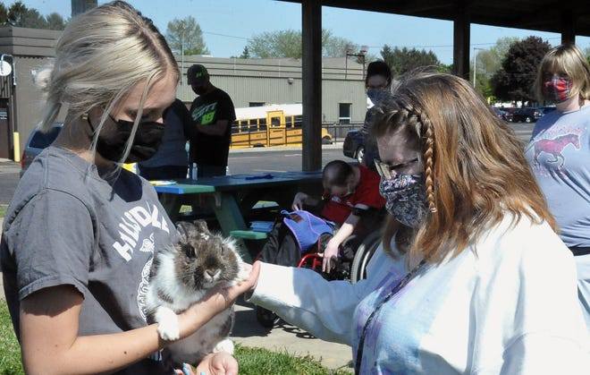 Ida Sue student Michelle Crabtree pets Sam the bunny held by HIllsdale FFA student Braxton Dove.