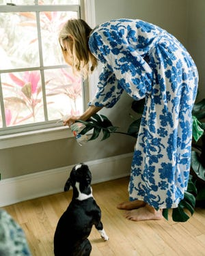 While outwitting bugs is a bit more challenging during summer, with a few tricks up your sleeve, you can keep your home safe and more comfortable with fewer uninvited guests.