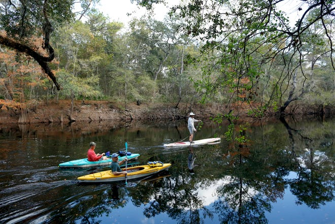 Visitors take a paddling tour of the Santa Fe River at the Santa Fe River Preserve's grand opening in Worthington Springs, in November 2017. [Gainesville Sun file]