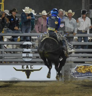 Defending PRCA world bull Riding champion and all-around champion Stetson Wright (top) rides Rip Slinger (bottom) with ease to score 85.5 points to the delight of fellow cowboys behind the gate at the Redding Rodeo on Thursday, May 13, 2021.