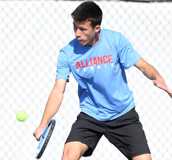 Alliance's Blake Hood finished second in the Division I sectional tennis tournament.