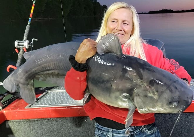 Paula Curtis Smith caught this 70-pound catfish in the Tennessee River.