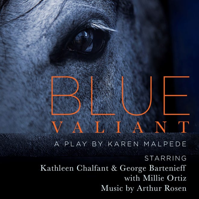BLUE BLUE VALIANT will play two LIVE performances only at Farm Arts Collective (38 Hickory Ln, Damascus, PA 18415).  Performances are Saturday, May 29 and Sunday, May 30 at 7:30 pm. Tickets are $25 and available at FarmArtsCollective.org.
