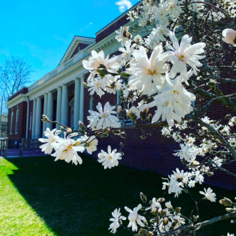 The Concord Free Public Library doors are springing open! Visit https://concordlibrary.org for more details.
