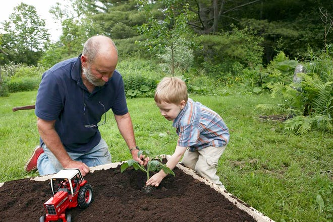 A child's garden can accommodate planting and playing with toys.