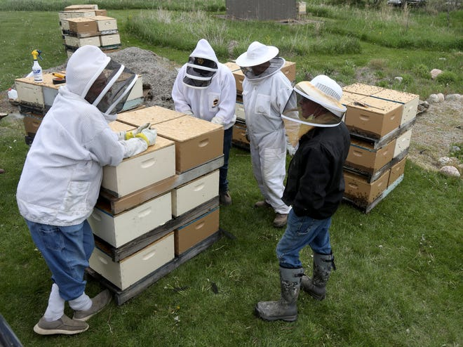 Beekeepers talk with James Foster (far right) of Hart, Michigan before he bought eight nine frame nucs for $1,520 during Great Lakes Bee Co.'s annual bee pickup days in Fremont, Michigan on May 15, 2021.  Foster is hoping these bees will survive after losing much of the hive last year. Beekeepers from around the state bought framed nucs, the wood box structure where honey bees and their queens live and produce honey.