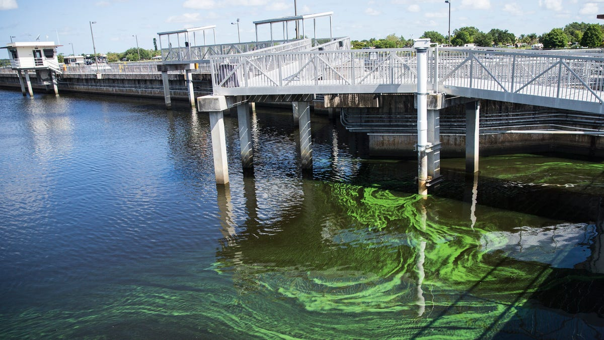 Guest opinion: U.S. Army Corps of Engineers all in for managing water quality 2