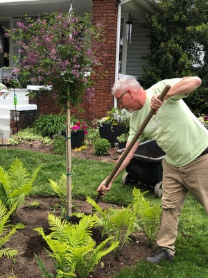 Crossroads Hospice & Palliative Care Provider Relations professional Steve Rondinella packs dirt around a new tree planted at his home in Dover as part of a Memorial Tree Planting service for end-of-life caregivers who lost patients they cared for during the COVID-19 pandemic. Rondinella was remembering Norma Pearch, a special friend he lost.