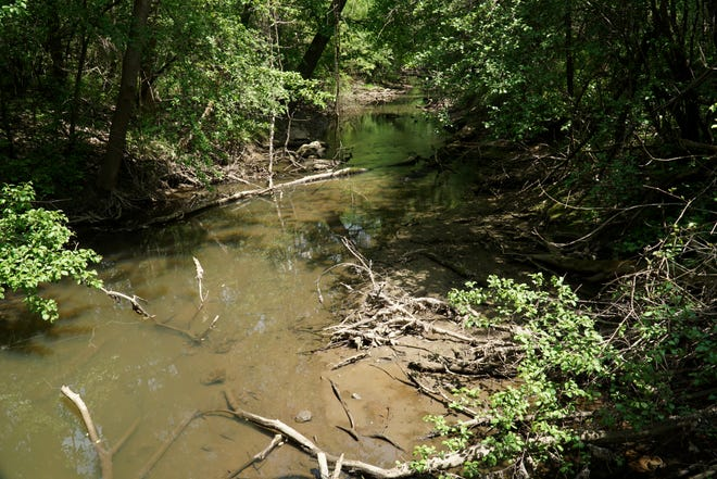 The Johnson Drain meanders slowly through the Coldwater Springs Nature Area. The park and stream is about a half a mile to the east, and down in elevation from the GFL Environmental landfill at Six and Ridge - and elevated PFAS levels have been found in the Johnson.