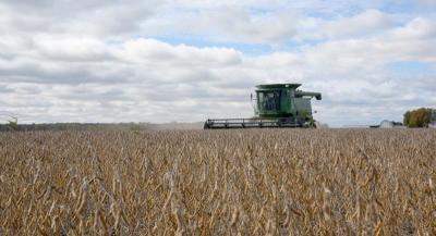 A farmer combines soybeans in Monroe County last fall.