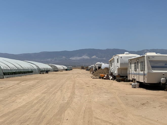 Travel trailers sit next to greenhouses in Lucerne Valley at a site that officials said was alleging to be a hemp cultivation. Authorities destroyed more than 76,000 marijuana plants at the grow May 13, 2021.