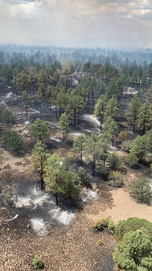 The Gila National Forest is pictured charred May 19, 2021 after areas of the Doagy Fire were contained. As of June 3, the wildfire's perimeter is fully contained.