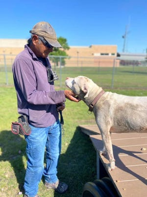 Longtime Williamson County Regional Animal Shelter volunteer Phil makes sure Eyce gets some quality time. Eyce is among the dogs up for adoption.