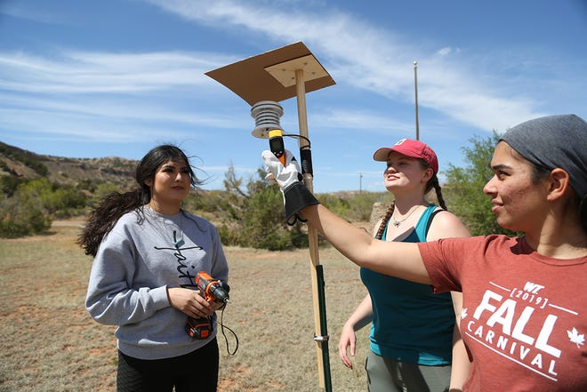 West Texas A&M University students Mari Ferrel, from left, Adriana Rademacher and Monica Ghosh install a temperature sensor as part of a summer-long study into extreme heat in Palo Duro Canyon State Park.