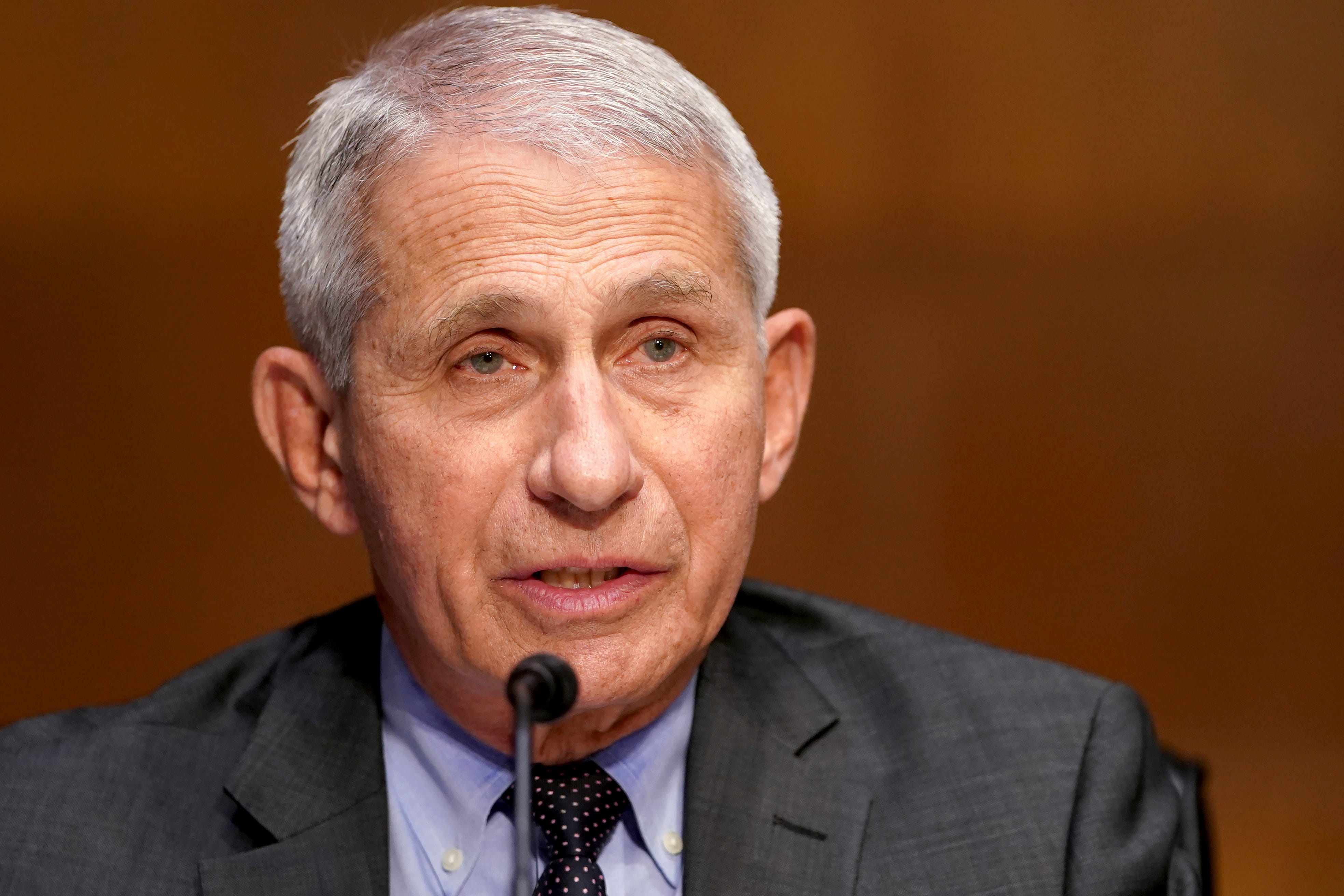 Fauci says more 'pain and suffering' still ahead 2