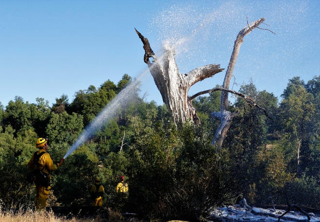 A Redding firefighter sprays foam on a snag that was part of a vegetation fire behind apartments on Dogwood Lane in north Redding on Thursday evening, May 20, 2021.